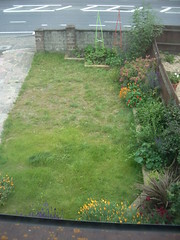 first cut before