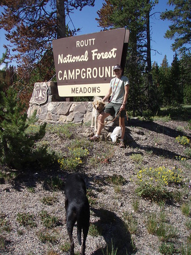Meadows campground Routt NF by you.