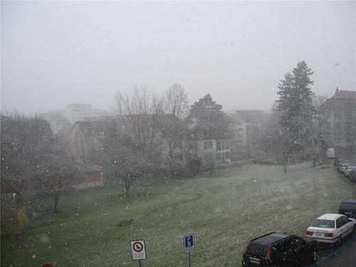 080324 Schnee in Zürich-006