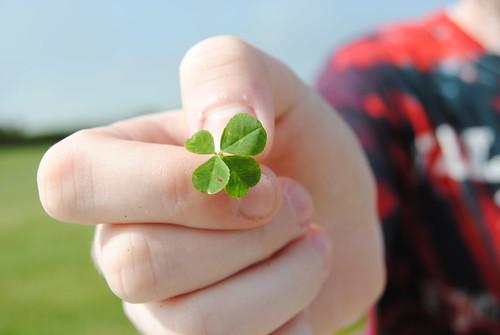 cristinalyn's four leaf clover.