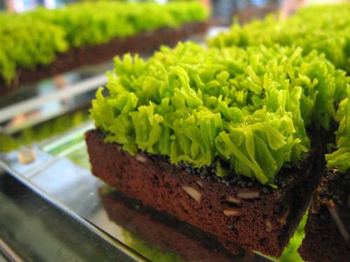 Grass brownie