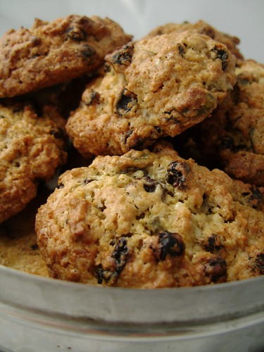 Oatmeal Raisin and Coconut Cookies