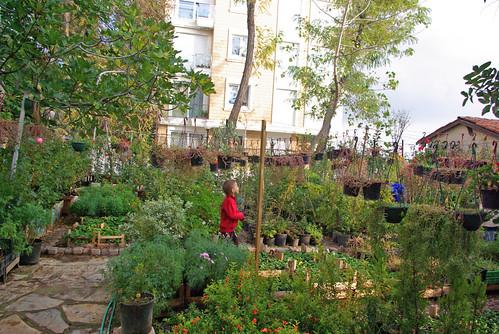 flower garden, istanbul , pentax k10d