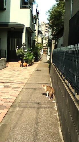 Machiya,Tokyo