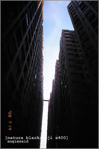 b-20080714_natura097_11.jpg