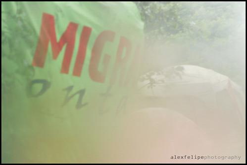 IMG_1370