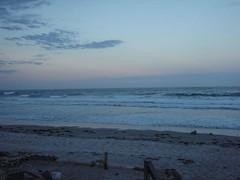 Beach-post Scoop Deck ride
