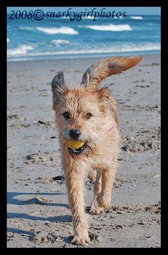 Mia on Beach