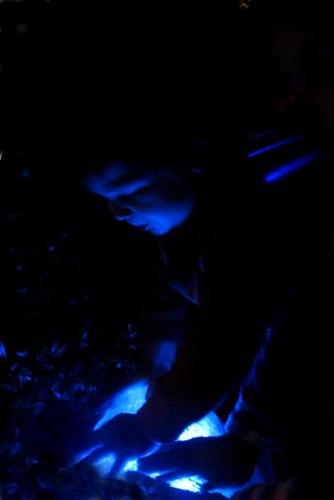 Jayden Glow