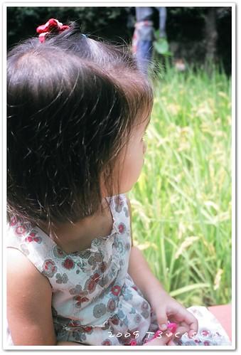2008_08_T3_37_03