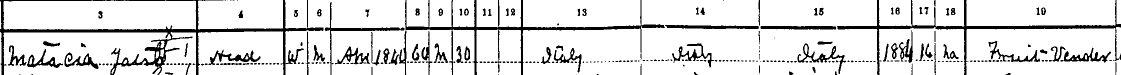 Matacia US Census 1900 C-ville