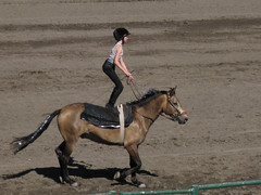 Then stood up on him, all while trotting around the arena!
