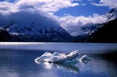 Alaskan Icecubes