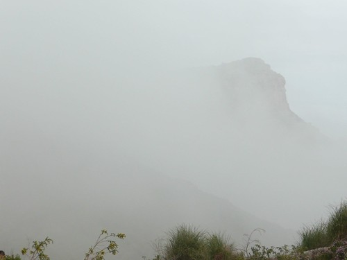 Rodeados de niebla