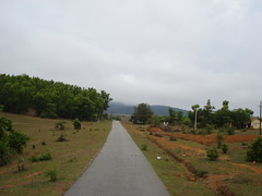 Sharavathy Valley 032