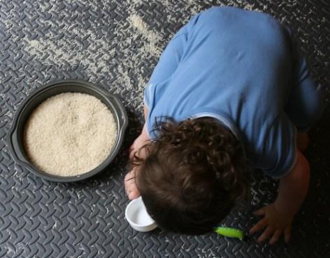 Rice in Harmony