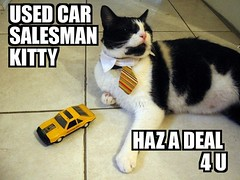 USED CAR SALESMAN KITTY