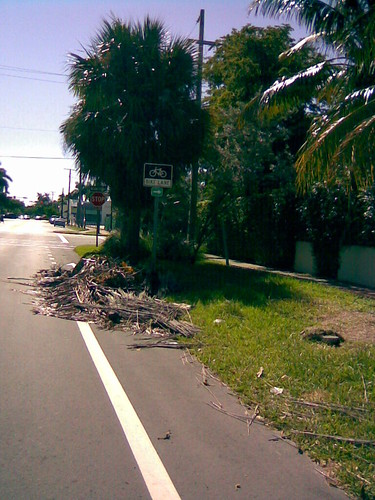 Bike Lane Obstruction #2