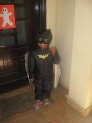 bug as batman