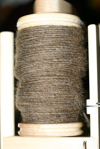 Undyed Coopworth singles