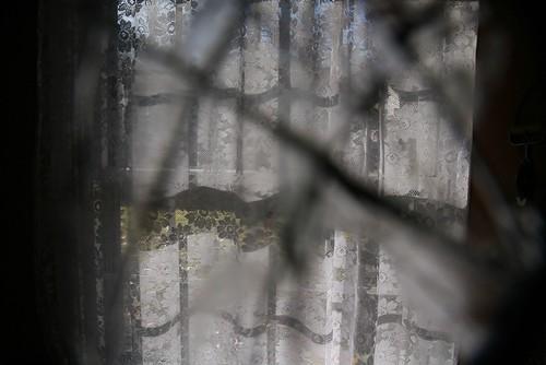 2008-12-03-broken-lens1