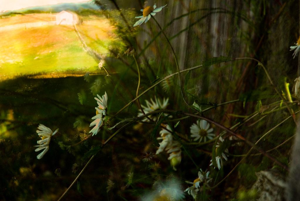 ushuaia, de la serie exposición múltiple, toma directa, 2009