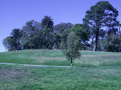 Bronzette, jeux et promenades sont quelques activites a faire au Lafayette Park
