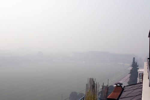 Polo Field Black Smoke