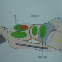 YOGA_仰臥鞋匠式(Cobbler's Pose in Lying Pose; Supta Baddha Konasana)