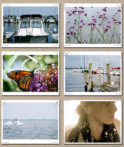 summer oh eight collage