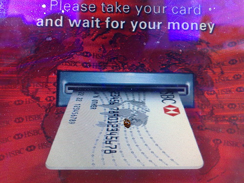 Ladybird on ATM
