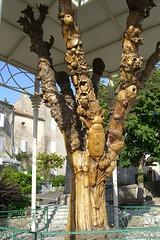 Arbre Sculpté 3