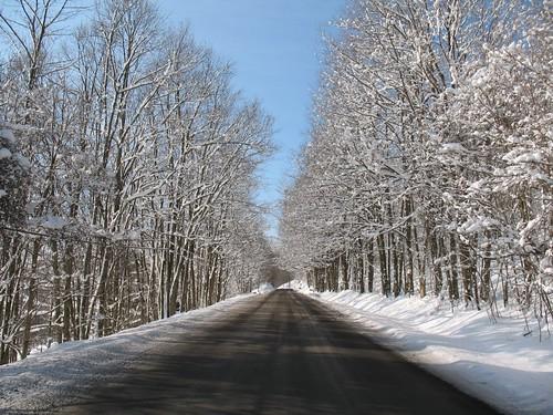 Road to Davis WV