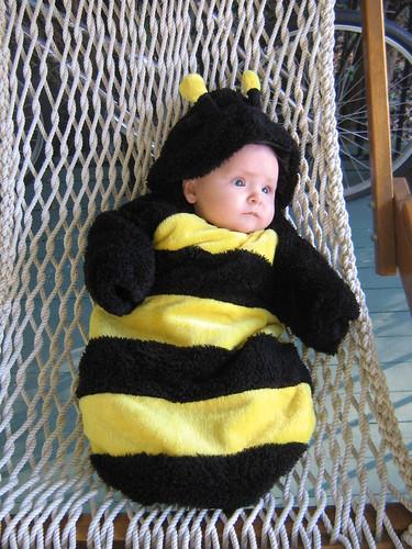 Pensive Bee