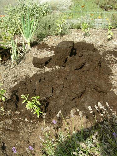 Compost blob