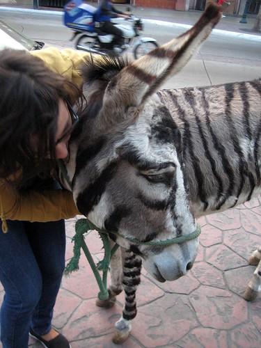donkey show sex pics