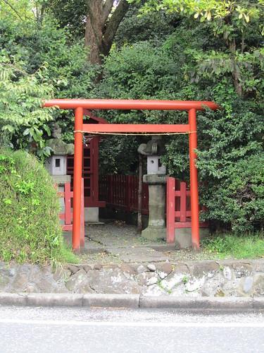 Small torii