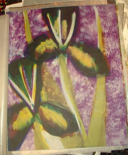 iris monotype