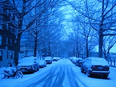 Seattle Snow Day 2008