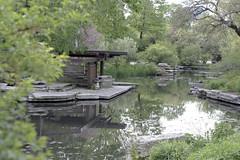 Arthur Caldwell Lily Pond