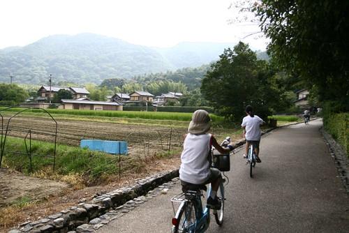 在踏單車的孩子們