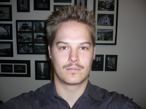 It really is a shame that my moustache basically looks like this for the rest of the month.  I would have a killer stache if only my growth rate remained constant.