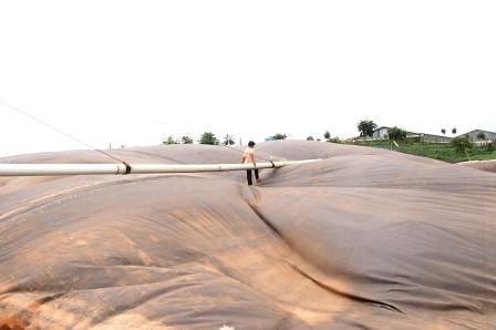 reaktot biogas kelapa sawit