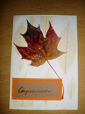congratulations card for Michiels sister & Family, who are moving house
