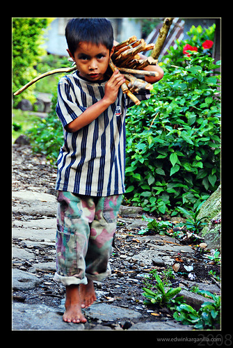 Cambulo, Banaue, Ifugao Province boy carrying firewood shoulder Pinoy Filipino Pilipino Buhay  people pictures photos life Philippinen  菲律宾  菲律賓  필리핀(공화�) Philippines