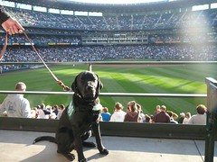 Simmons at Safeco Field