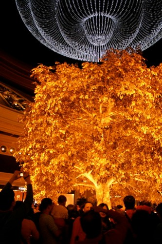 The golden tree and the chandelier