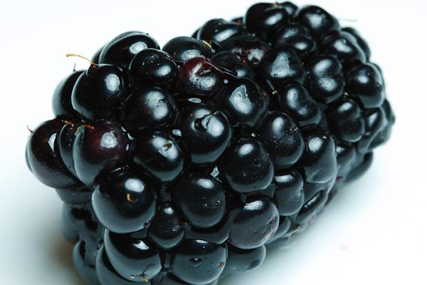 A high key blackberry.