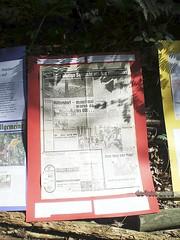 Waldbesetzung Kelsterbach Juni 2008 (22)