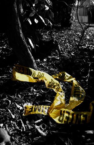Scene It Before by CSI Will.